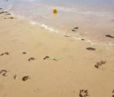 Les plages à éviter cet été au Maroc. Jbila à Tanger…