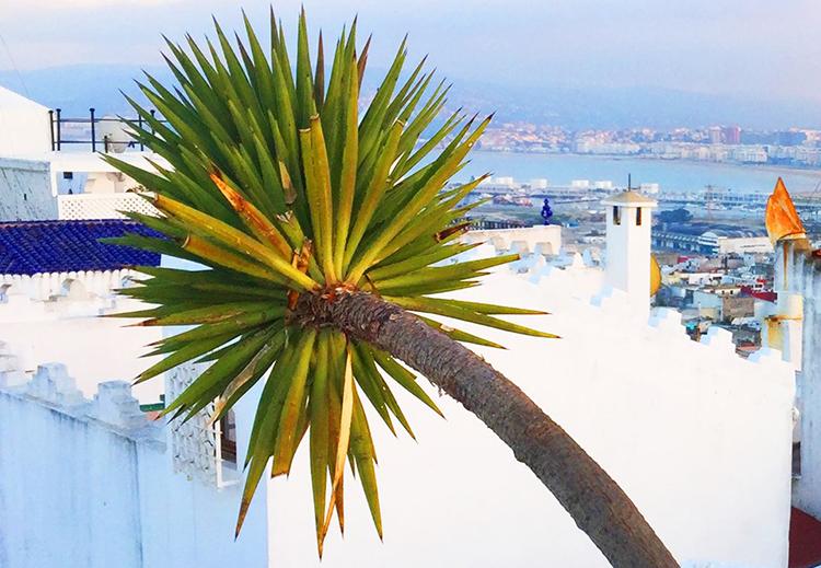 Tangier white party
